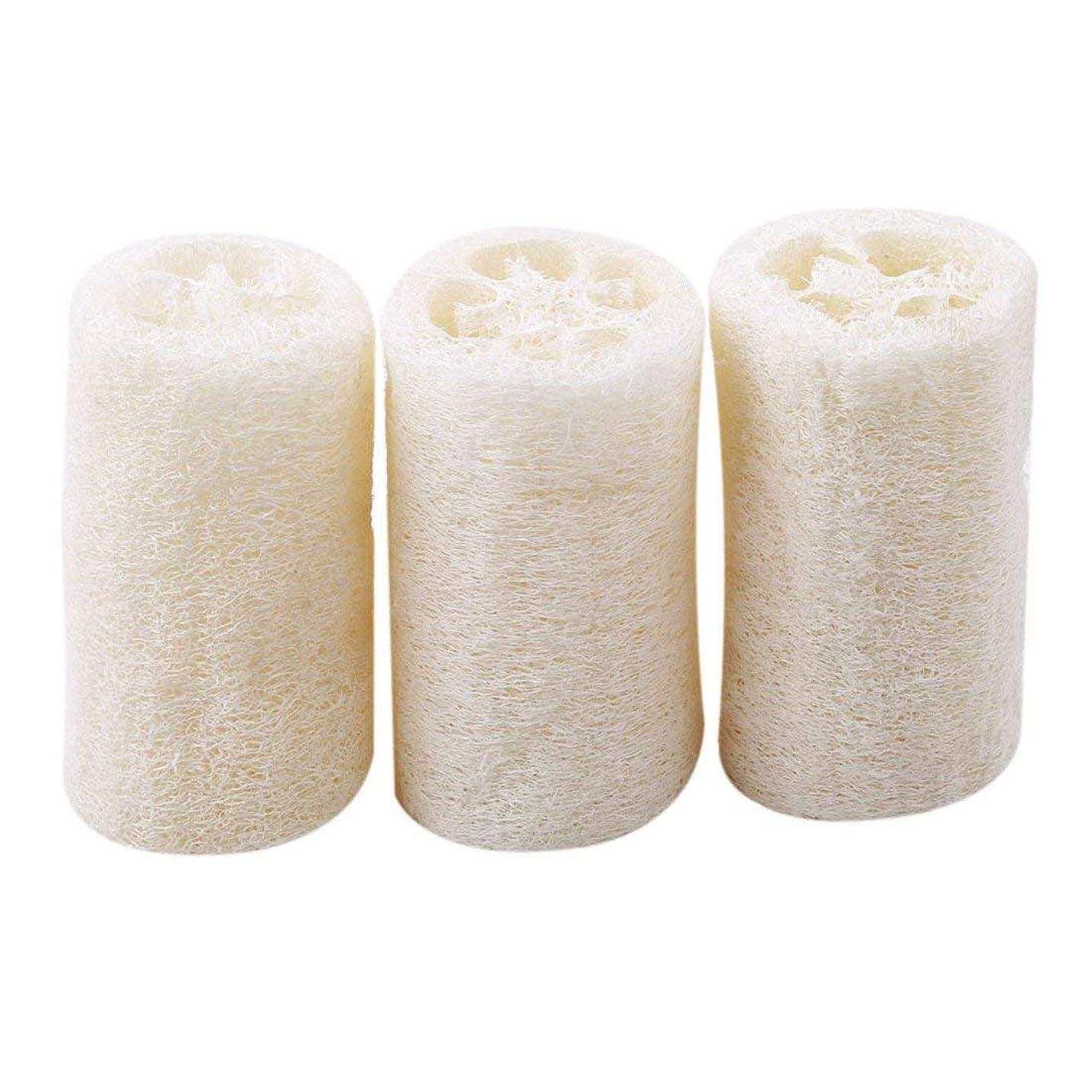 ご飯メアリアンジョーンズ立方体Onior 耐久性 ボディースポンジ へちま お風呂 清掃 洗浄作業 3個セット