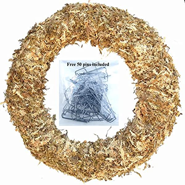24 Living Wreath Sphagnum Moss Form Complete