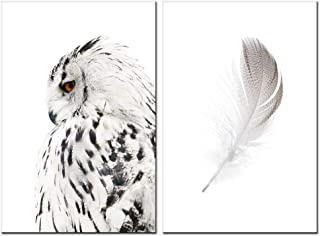 sechars - Contemporary Wall Art Canvas Grey Owl Pictures for Living Room Feather Paintings Modern Animal Prints Giclee Artwork Stretched Ready to Hang,Each Piece 16x24 inch