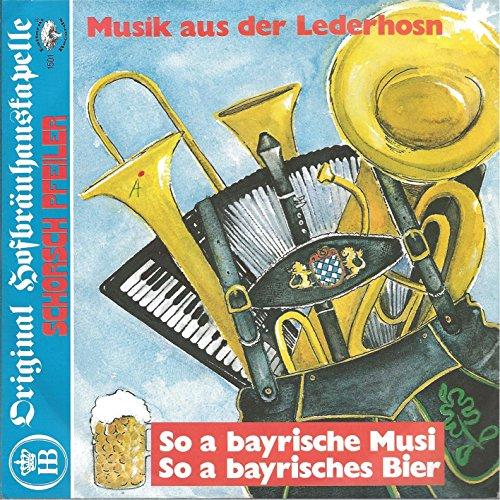 Musik aus der Lederhos'n / So a bayrische Musi / 1501