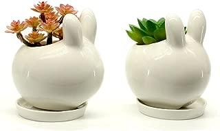 Bunny Rabbit Design White Air Plant Plant Ceramic Mini Flower Pot Succulent Planter/Saucer Set of 2