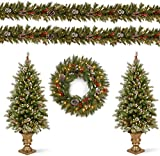 National Tree Company Pre-lit Holiday Christmas 5-Piece Set   Wreath, Set of 2 Entrance Trees and Garlands with White Lights