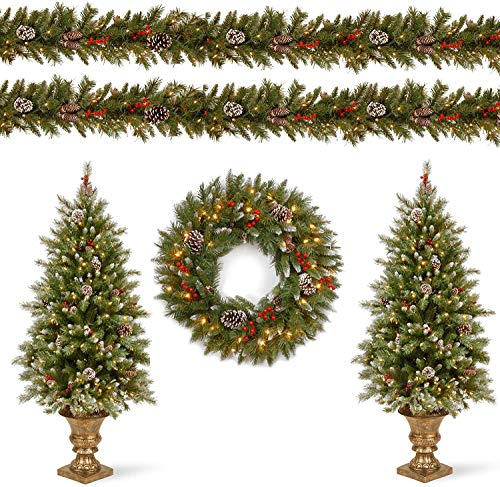 National Tree Company Pre-lit Holiday Christmas 5-Piece Set | Wreath, Set of 2 Entrance Trees and Garlands with White Lights