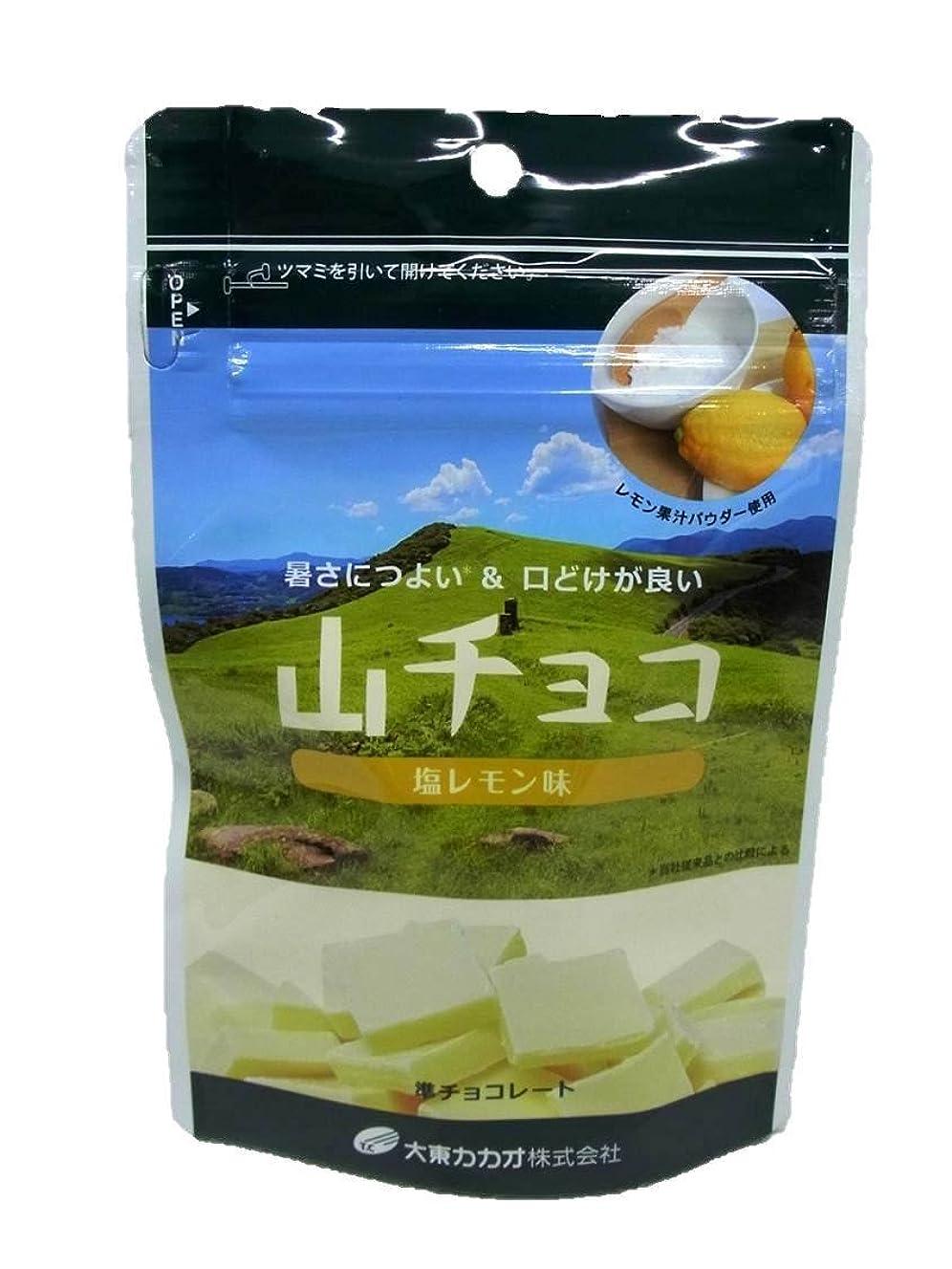 ぐるぐる日付付き弾薬大東カカオ 山チョコ(塩レモン味)50g×1個