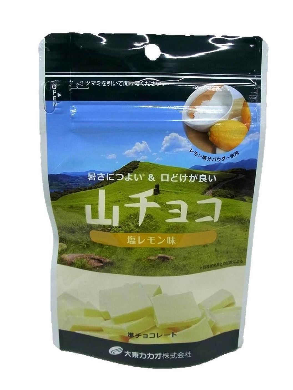 触覚リーダーシップコイル大東カカオ 山チョコ(塩レモン味)50g×1個