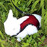 Happy Hachi Confortevole Imbracatura per Coniglio con Elastico Guinzaglio Morbido Pettorina Traspirante per Piccoli Animali Criceti Gatti(S Rosso)