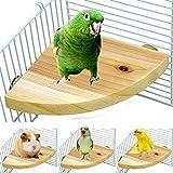 Borange Bois Perchoir plate-forme Bird Parrot support cage de terrain de jeu Accessoires pour petite Anminals Rat Hamster gerbille Rat Mouse inséparables Amazones pinsons perruche jouet d'exercice