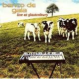 Live at Glastonbury [20th Anniversary Edition] [2 Discs]