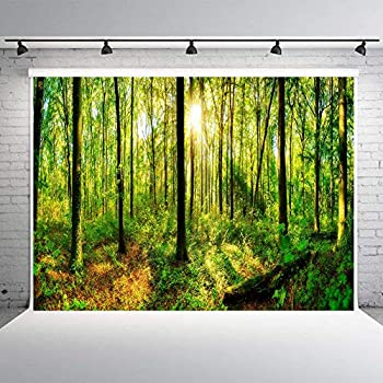 Best forest background Reviews