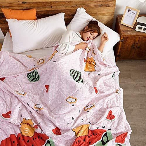 Funda nórdica doble y King Quilt Consolador antibacteriano de microfibra ligera Beding 100 % algodón, lanzamientos para sofá cama Throw 030 (color: D, tamaño King)