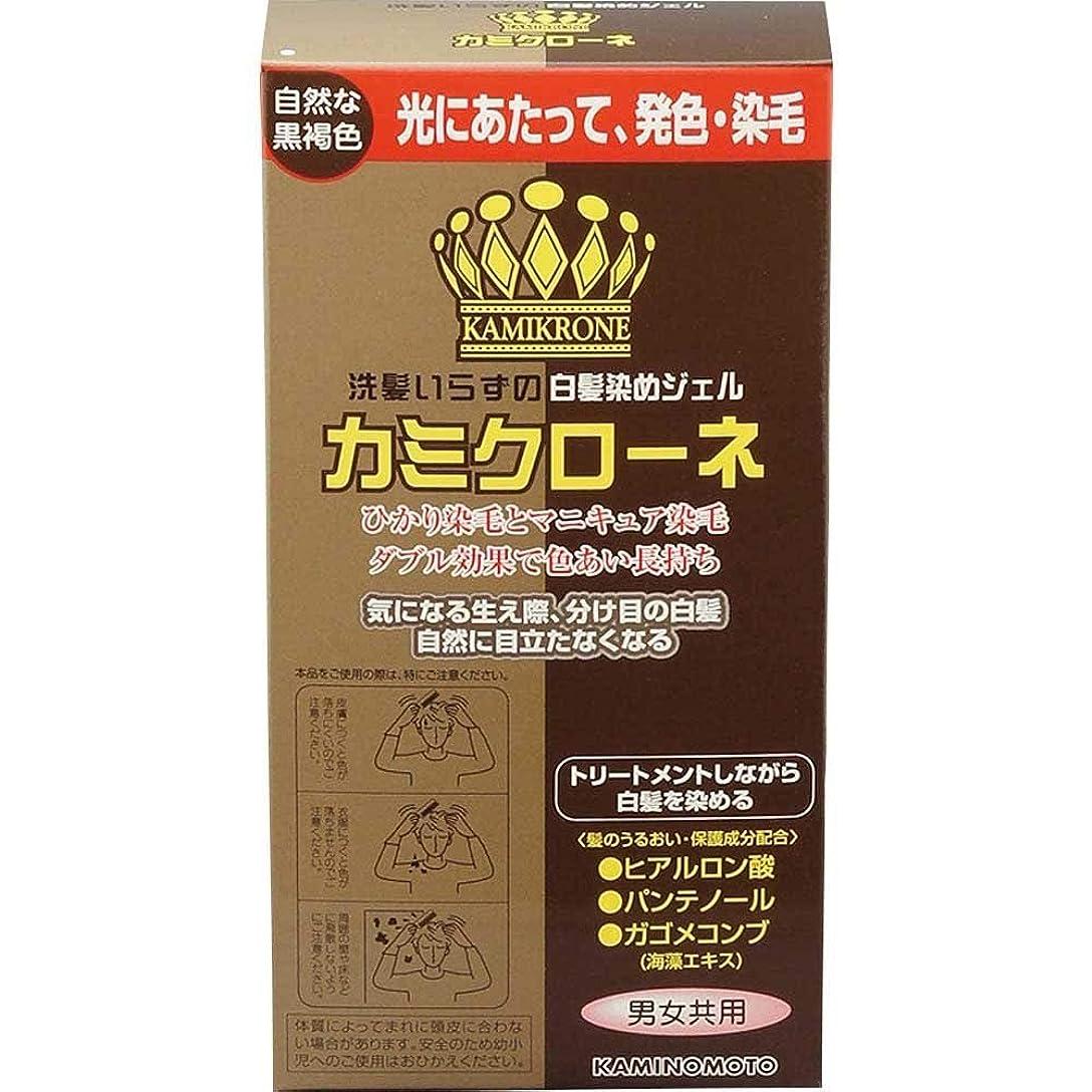 キャンパスポスターフルーティー加美乃素 カミクローネ ダークブラウン 80ml×6個