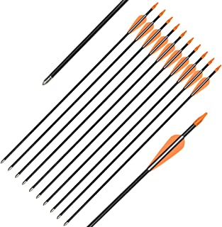 Elong Fiberglass Arrows Archery 24 26 Inch Target Shooting Practice Safetyglass Recurve Bows Suitable for Youth Children Woman Beginner
