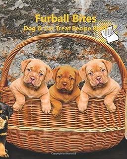 Furball Bites: Dog & Cat Treat Recipe Book