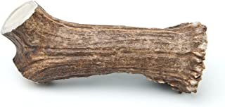 Chasing Our Tails Moose Rack Snack, 100-Percent Naturally Shed Moose Antler Chew