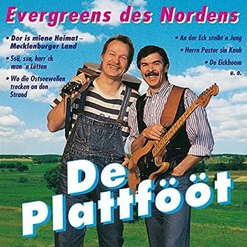 Evergreens Des Nordens