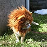 Löwenmähnen Perücke für Katzen, niedliches, bequemes Kostüm mit leicht zu verwendendem Klettverschluss