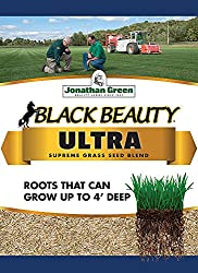 grass-seed-to-prevent-weeds-coming-back