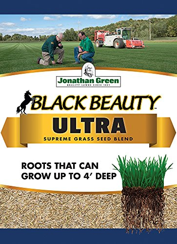 Jonathan Green Black Beauty Ultra Grass Seed, 1-Pound