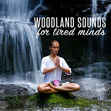 Woodland Sounds for Tired Minds