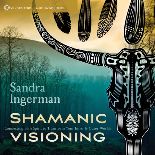 Shamanic Visioning cover art