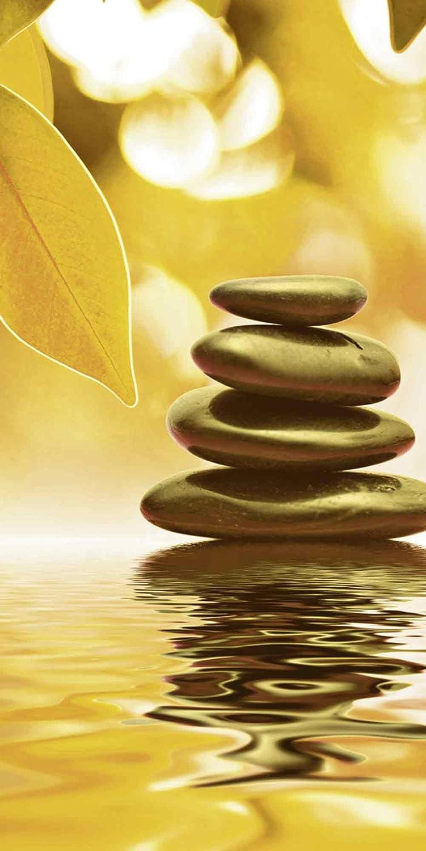 Artland Qualitätsbilder   Glasbilder Deko Glas Bilder Bilder Bilder 30 x 60 cm Zen Steinpyramide auf Wasser mit Blättern in Sepia A7HY B00KOC8JWA 16eab2