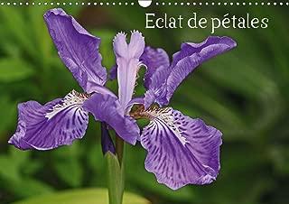 Eclat de petales 2020: Les fleurs embellissent nos journees (Calvendo Nature)