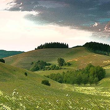 Endless Nature