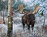 Diamond Painting Kits for Adults Kids, 5D DIY Animal Deer Diamond Art Accessories with Full Drill for Home Wall Decor - 15.7×11.8Inches