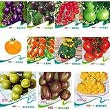 30pcs 11kinds diferentes sabores de color tomate semillas vegetales de frutas SEMILLAS Bonsai cebra de tomates morados Cherokee cereza Negro Azul