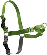 PetSafe Easy Walk Dog Harness, No Pull Dog Harness, Apple Green/Gray, Medium/Large