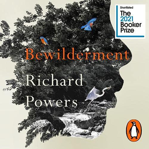 Bewilderment cover art
