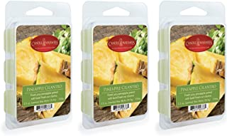 CANDLE WARMERS ETC 3-Pack 2.5 oz Wax Melt Tart Brick, Pineapple Cilantro