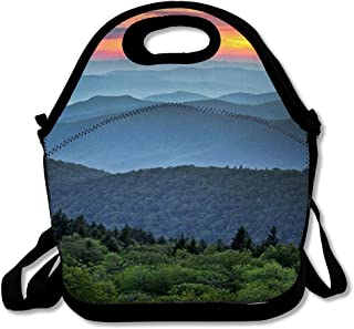 fit and fresh asheville lunch bag