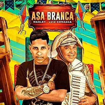 Asa Branca (feat. Luiz Gonzaga) (Brega Funk)