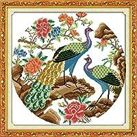 刺繡スターターキット刻印クロスステッチキット初心者DIY11CT刺繡用の2つの美しい孔雀簡単な面白いプレプリントパターン16x20インチ