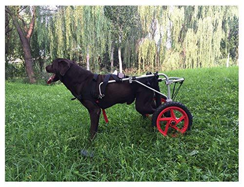 Carrito para perros, adecuado para la práctica de mascotas, rehabilitación, lesiones asistidas, caminatas asistidas, perros grandes especiales, ajustables, 2 ruedas, 25 kg (55 libras) - 55 kg (121 lib