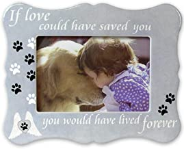BANBERRY DESIGNS Pet Memorial Picture Frame - If Love Could Have Saved You Pet Frame - Paw Prints and Angel Wings