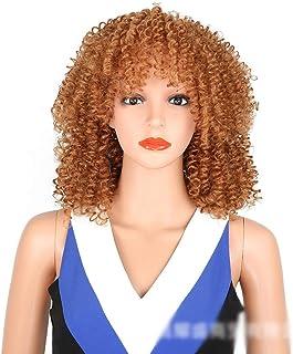 BOBIDYEE アフリカの黒人女性の前髪爆発ヘッドの小さな巻き毛のかつらコスプレパーティードレスパーティーかつら (Color : ブラウン)