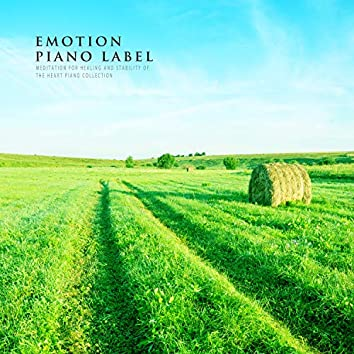 Meditation For Healing And Stability Of The Heart Piano Collection