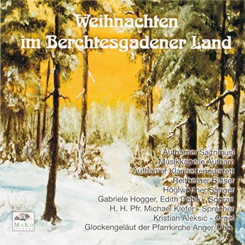 Die Winterrose