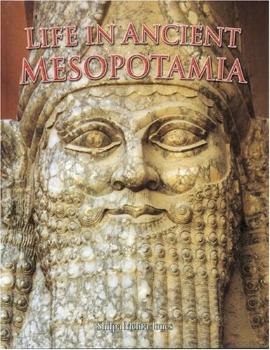 Life in Ancient Mesopotamia (Peoples of the Ancient World (Paperback))
