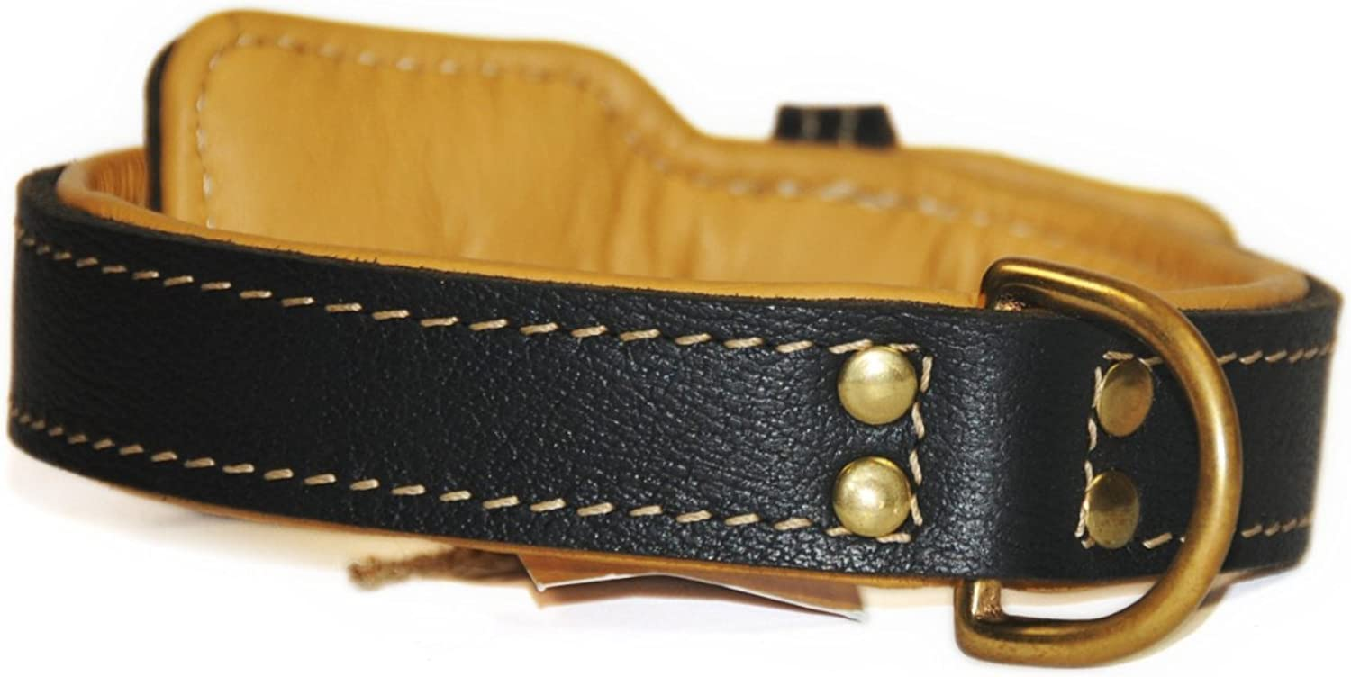 Dean and Tyler ITALIAN TAILOR, Dog Collar with Brown Padding and Brass Hardware, Black, Size 38Inch by 11 4Inch, Fits Neck 36Inch to 40Inch