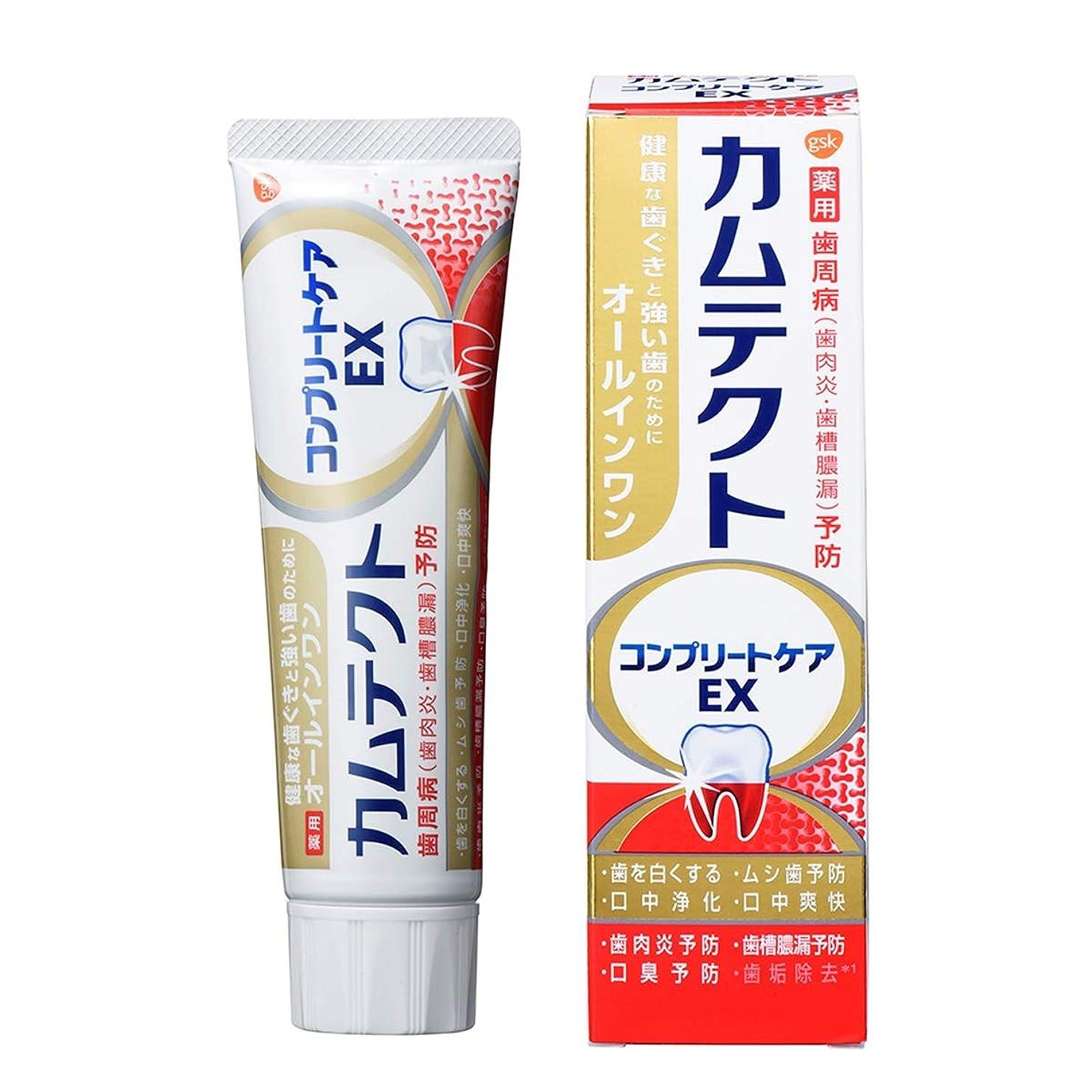 成熟した準備ができてパパカムテクト コンプリートケアEX 歯周病(歯肉炎?歯槽膿漏) 予防 歯磨き粉 105g