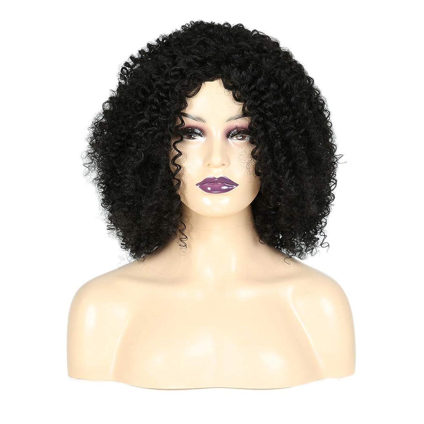 合理的メンタルグラスかつら 人工毛水の波短いカーリーブラックアフリカ女性の爆発ヘッドフルヘッド毎日コスプレドレス小さな巻き毛のかつら (色 : 黒)