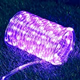 Hopolon Outdoor Rope String Lights, 4.5V Safety UL Plug Powered Waterproof Tube Light with 100 LED, 33 feet 8 Modes Copper Fairy Lights for Garden Fence Patio Yard Wedding Christmas Hall (Purple)