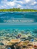 Tropical Reef And Ocean Aquarium (No Dialog)