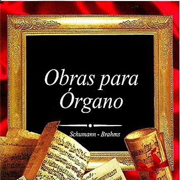 Obras para Órgano, Schumann - Brahms
