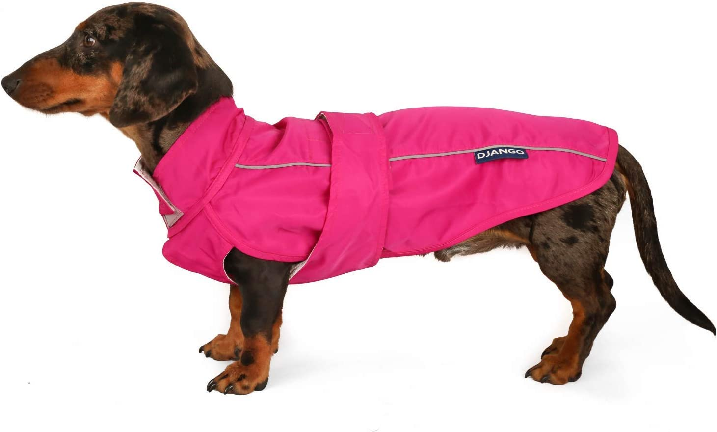 Max 48% OFF Super intense SALE DJANGO City Slicker All-Weather Jacket Water-Repellent Rai Dog