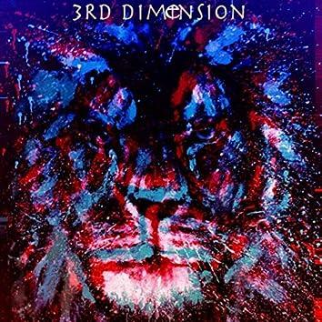 3rd Dimension