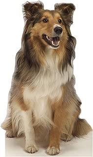 Best cardboard dog cutout Reviews